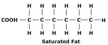 saturated fat psu.edu