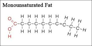 monounsaturated